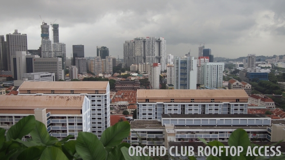 View from Rooftop  @ Parkroyal Orchid Club Lounge